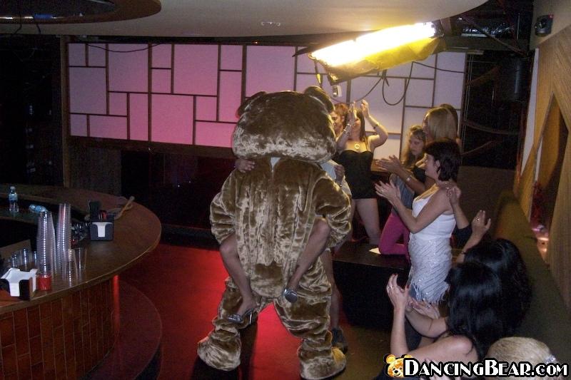 Dancing bear red tube